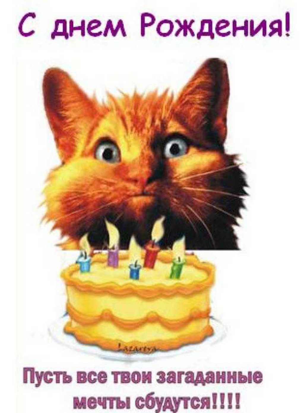 Поздравление с днём рождения косте в стихах фото 405