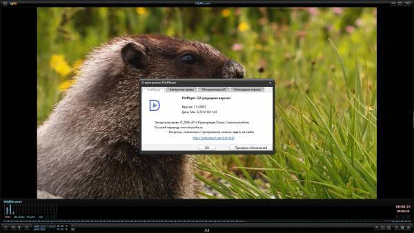 Daum PotPlayer 1.5.45955 Stable RePack & Portable